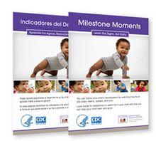 Image of Milestone Moments Booklet